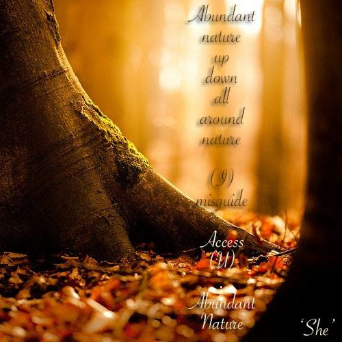 BeSimply...Abundance {Sound&Silence}