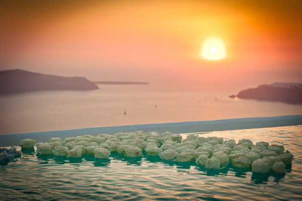 Infinity-Pool-Floating-Flowers-600x400