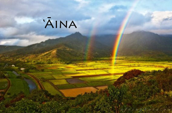 BeSimply...Aina {That Which Feeds}