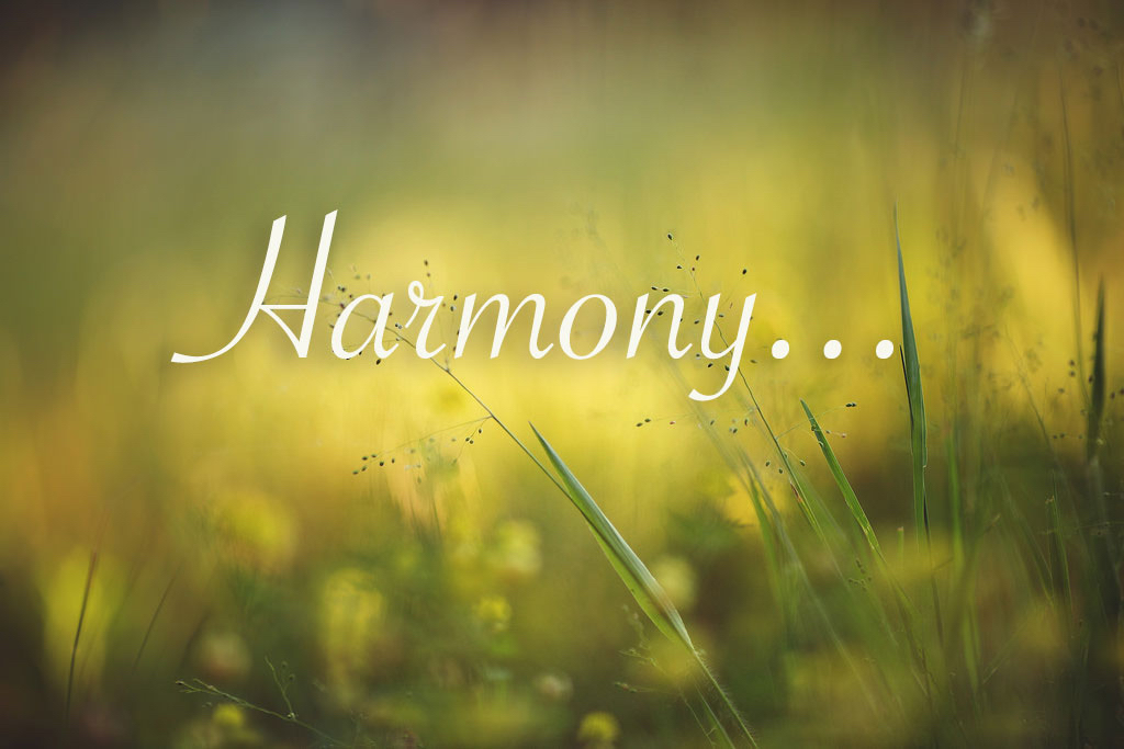 BeSimply...Harmony {LoveSelf}