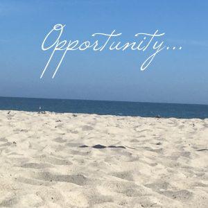 stress free destiny